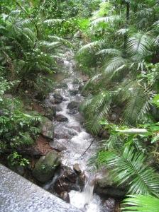 Roadside waterfall.