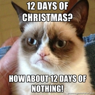 I totally agree Grumpy Cat.